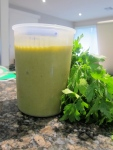 Vegetable Stock Concentrate - a must have for any Thermomix owner!